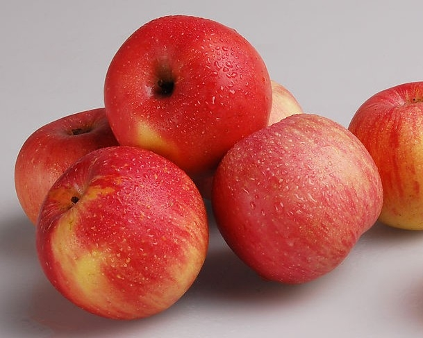 众所周知,苹果富含维C、维E、多酚和黄酮类物质,它们都是天然抗氧化剂,对预防心脑血管疾病尤其有效。苹果的含钙量比一般水果丰富得多,可帮助代谢掉多余盐分,有助减肥。   但是苹果核中含有氢氰酸却少有人知。研究人员发现,苹果核含有少量有害物质——氢氰酸。氢氰酸大量沉积在身体,会导致头晕、头痛、呼吸速率加快等症状,严重时可能出现昏迷。   但也不必过分担心,苹果中的氢氰酸主要存在于果核,果肉里并没有。需要提醒的是:吃苹果时习惯啃到果核,虽不会马上导致中毒,但长期这样吃,的确对健康不利。