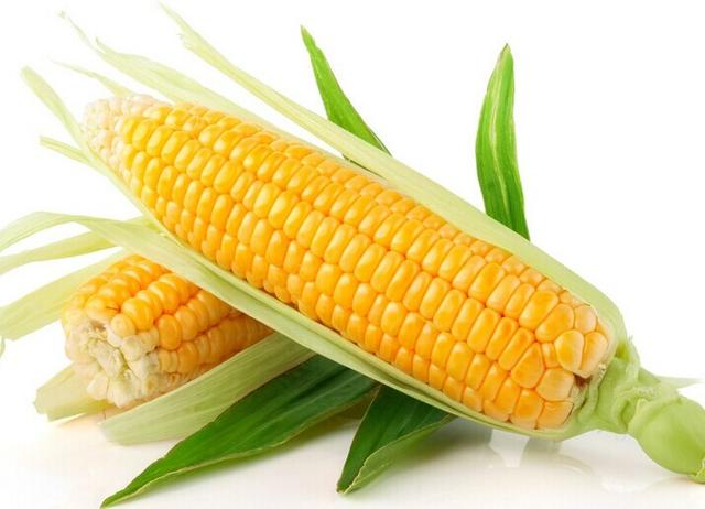 了解多种食物能抵抗8种癌症